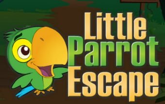 Little Parrot Escape