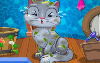 My Cute Cat Makeover