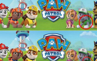 Paw Patrol Differenze