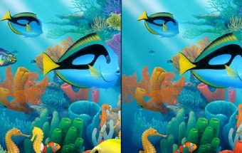 Underwater See the Difference
