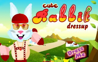 Cute Rabbit Dressup