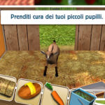 Pet World – Amici da salvare